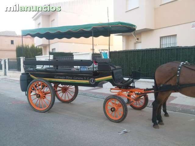 ALQUILER DE CARROS