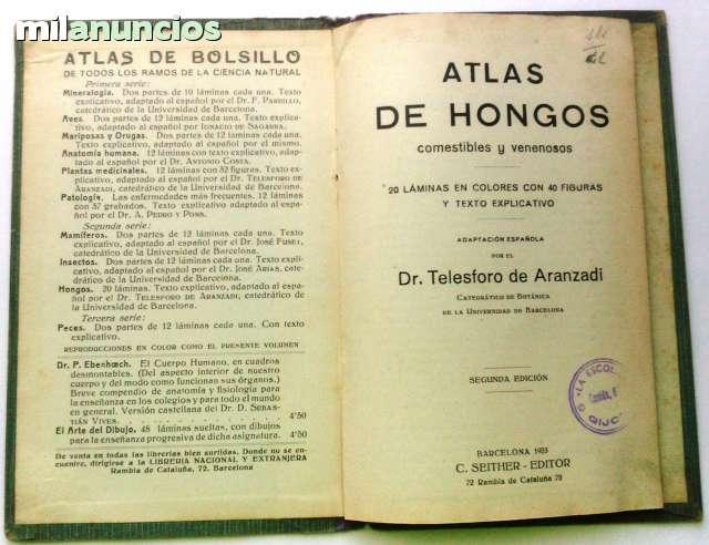 HONGOS COMESTIBLES Y VENENOSOS - foto 2