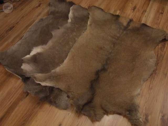 Cómo curtir pieles de ovejas | Pieles de animales, Alfombras