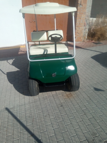 BUGGY BUGGIE BUGY GOLF GASOLINA-ELECTRIC