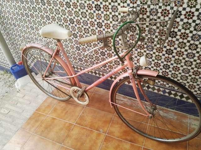 Bicicleta Torrot Ver