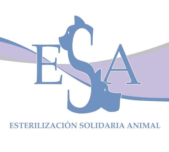 AYUDA A LOS ANIMALES DE LA CALLE
