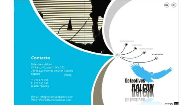DETECTIVES HALCON - foto 1