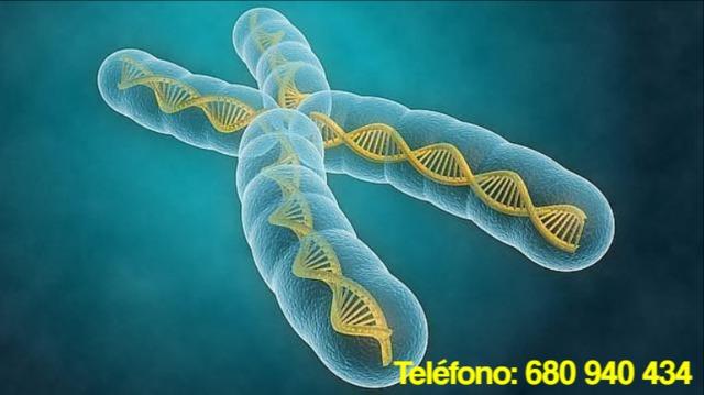 BIOLOGÍA QUÍMICA MATEMÁTICAS