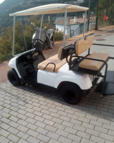 GOLF CAR BUGGY GASOLINA ELECTRICO - foto 3