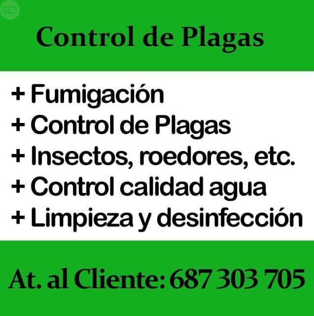 FUMIGACIÓN EN SEVILLA.  CONTROL PLAGAS - foto 1