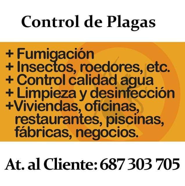 FUMIGACIÓN EN SEVILLA.  CONTROL DE PLAGAS - foto 1