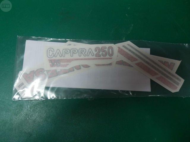 ADHESIVOS MONTESA CAPPRA VG 250