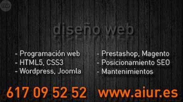 DISEÑOS WEB A BAJO PRECIO - foto 1