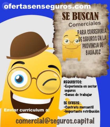 SE BUSCAN COMERCIALES - foto 1
