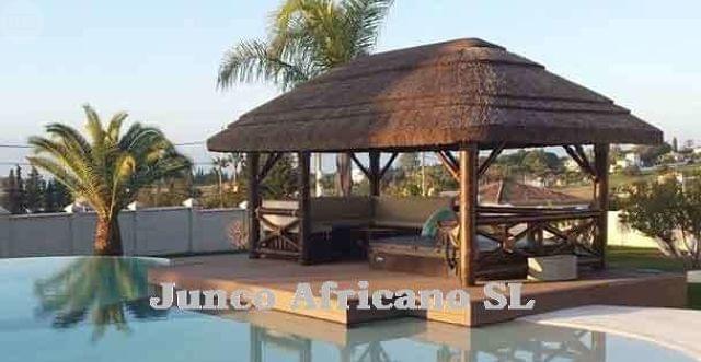 Todo En Junco Africano