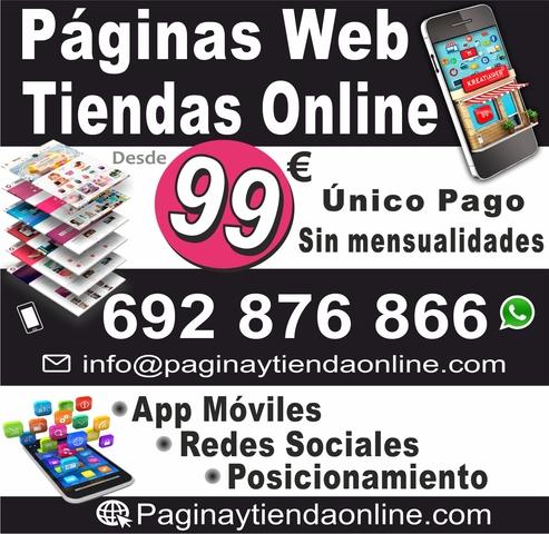 PAGINAS WEB -TIENDA- POSICIONAMIENTO-79