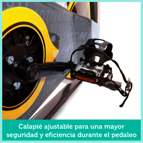 BICI SPINNING VOLANTE INERCIA 24KG - foto 8