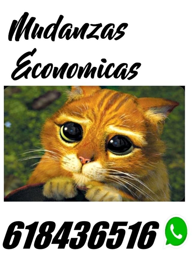 MUDANZAS ECONOMICAS EN MADRID