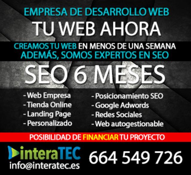DISEÑADOR DE PÁGINAS WEB A MEDIDA - foto 1