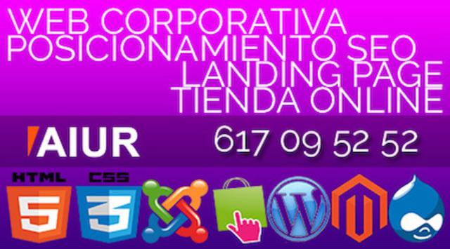 MAQUETADOR DE PÁGINAS WEB PROFESIONAL - foto 1