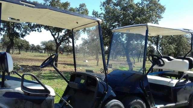 Buggy Golf  Customizados