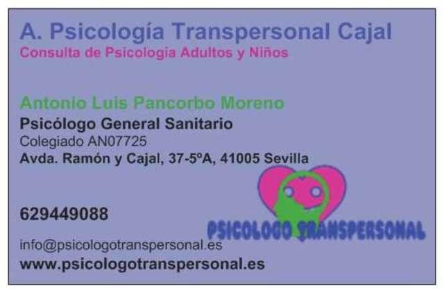 PSICÓLOGO COLEGIADO EN SEVILLA - foto 3