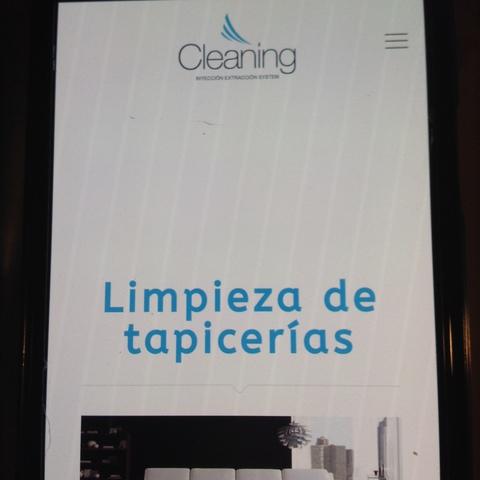 LIMPIEZA DE TAPICERÍA A DOMICILIO - foto 4