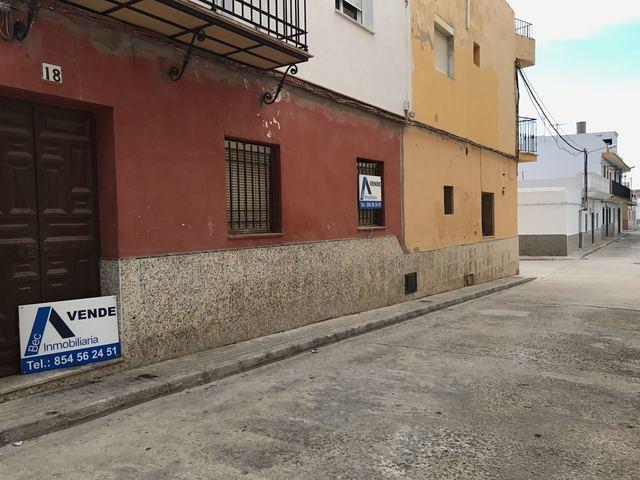 EL PINAR - foto 1