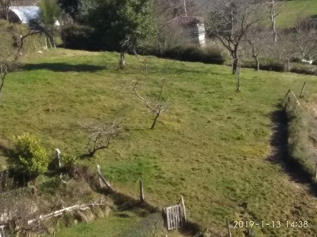 FINCA AGRARIA A 8 KM.  DE SIERO EN MUÑÓ - foto 1