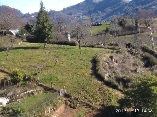 FINCA AGRARIA A 8 KM.  DE SIERO EN MUÑÓ - foto 4