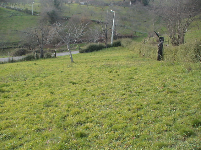 FINCA EDIFICABLE A 8 KM.  SIERO EN MUÑÓ - foto 1