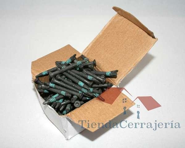 Caja Tornillos Extractor 20 Unidades 4. 8