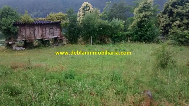 CASA PARA REHABILITAR CON TERRENO 3900M2 - foto 7