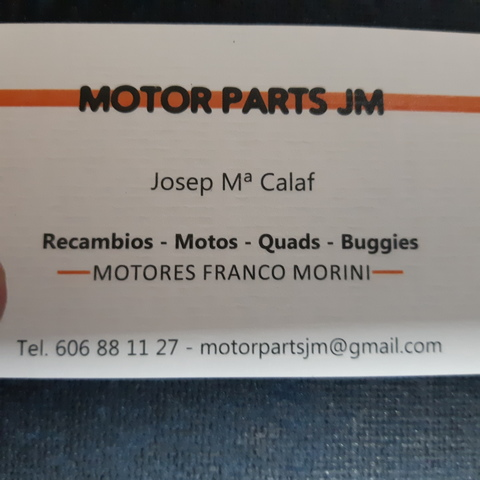 MOTORES FRANCO MORINI RECAMBIOS 24 HORAS