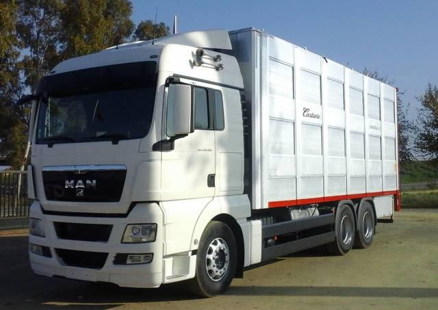 CAMION GANADERO MAN - TGX 28 480