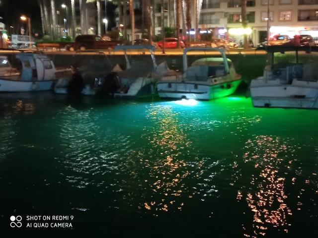 Submarina  Luz Pesca Calamar