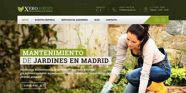 PROGRAMADOR WEB,  DISEÑO WEB ECONOMICO - foto 2