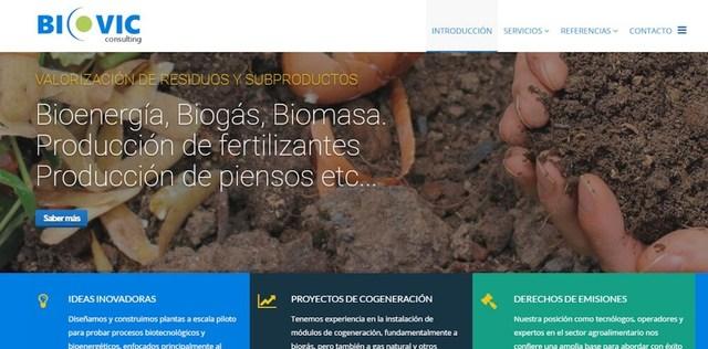 PROGRAMADOR WEB,  DISEÑO WEB ECONOMICO - foto 3