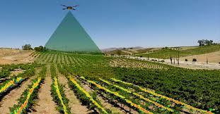 TRABAJOS DRONES AGRICULTURA DE PRECISIÓN - foto 4