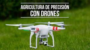 TRABAJOS DRONES AGRICULTURA DE PRECISIÓN - foto 2