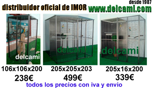 VOLADERO LORO, GUACAMAYO 205X205X205