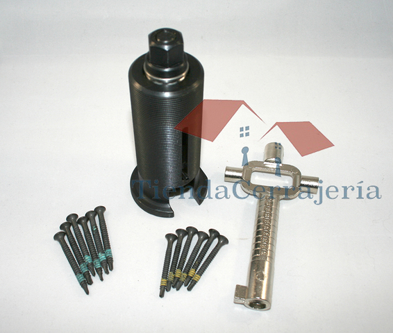 Set Extractor 12 Tornillos