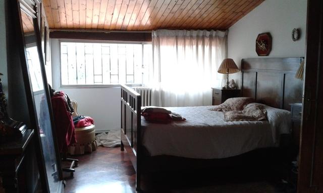 MOLLABAO - LA CHAMUSCA - foto 4