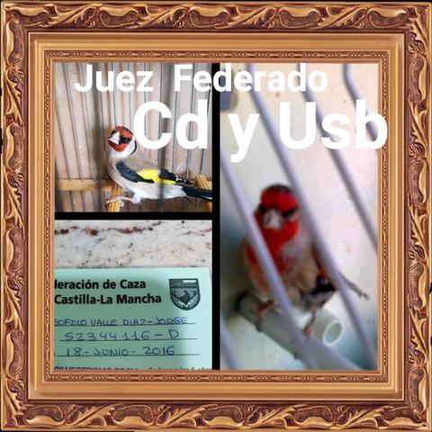 CD Y USB EDUCACIÓN JILGUEROS