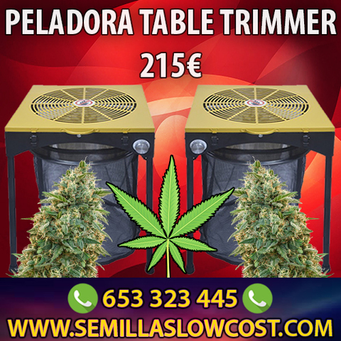 PELADORA SOLO 215