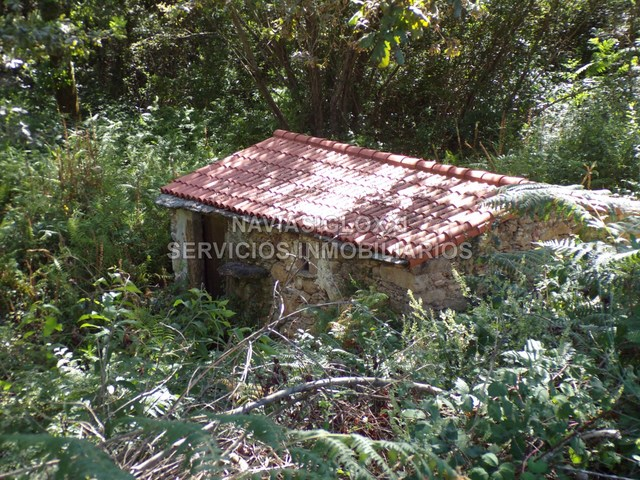 OPORTUNIDAD.  FINCA CON CASA Y EDIFICABLE - foto 5