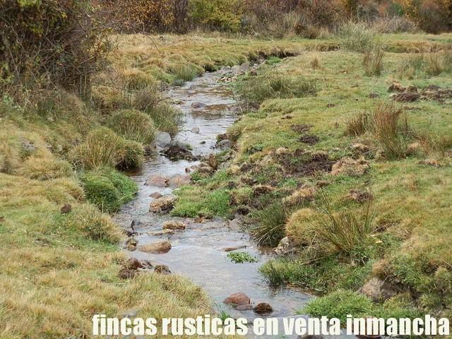 FINCA EN VENTA INMANCHA GANADERA-CAZA - foto 2
