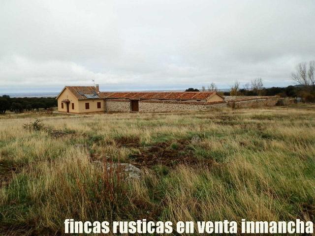 FINCA EN VENTA INMANCHA GANADERA-CAZA - foto 9