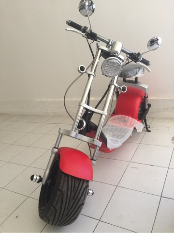 SCOOTER HARLEY LUXE INR  2000 WATIOS - foto 1