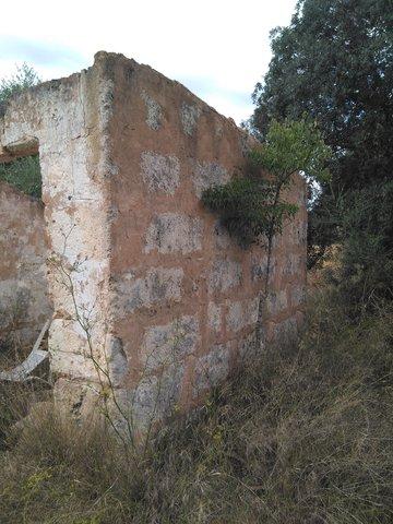 RÚSTICA CON CASETA A REFORMAR.  INCA - foto 1