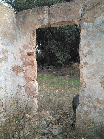 RÚSTICA CON CASETA A REFORMAR.  INCA - foto 2