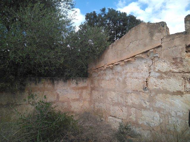 RÚSTICA CON CASETA A REFORMAR.  INCA - foto 5