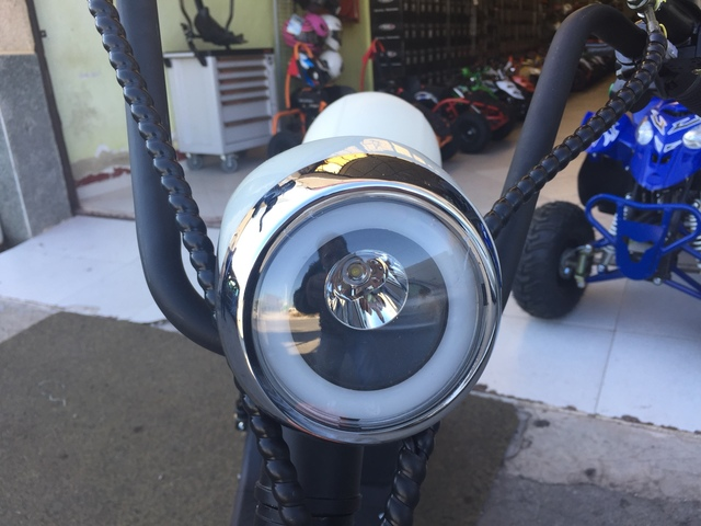HARLEY CITYCOCO BATERIA EXTRAIBLE 1000 W - foto 6