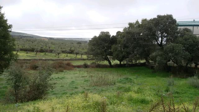 MOHEDAS DE GRANADILLA - foto 3